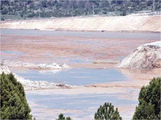 Με οικολογική καταστροφή κινδυνεύει ο Εύξεινος Πόντος