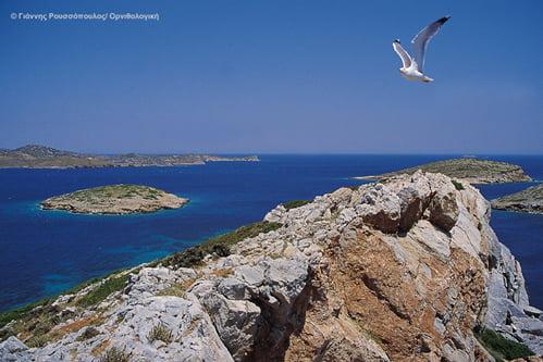 Ενοικιάζοναι πολύτιμες νησίδες: η φυσική μας κληρονομιά σε τιμή ευκαιρίας