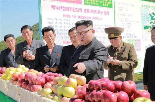 Κωδικός «δολοφονήστε τον Κιμ» – πληροφορίες για σχέδια της Ν. Κορέας