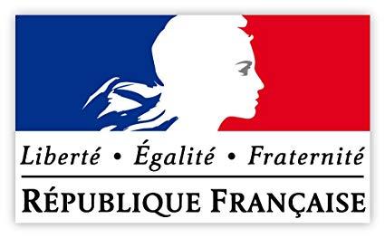 Η γαλλική πολιτική τάξη και οι παραβιάσεις του Συντάγματος