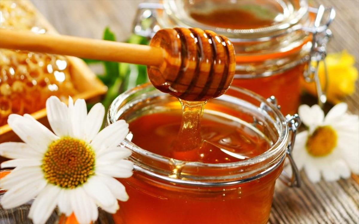 Μάθετε τα πάντα για το ελληνικό μέλι
