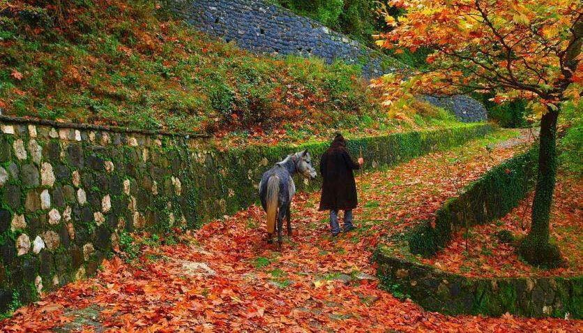 Μέσα στην καρδιά των Τζουμέρκων βρίσκεται ένα άγνωστο κουκλίστικο χωριουδάκι πνιγμένο στα έλατα, τα πεύκα και τις κουμαριές