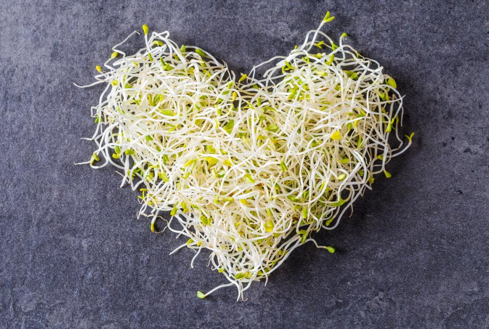 Φύτρα: Πώς θα τα καλλιεργήσετε στην κουζίνα σας – Τα φύτρα είναι από τα πλέον ισορροπημένα και υγιεινά τρόφιμα
