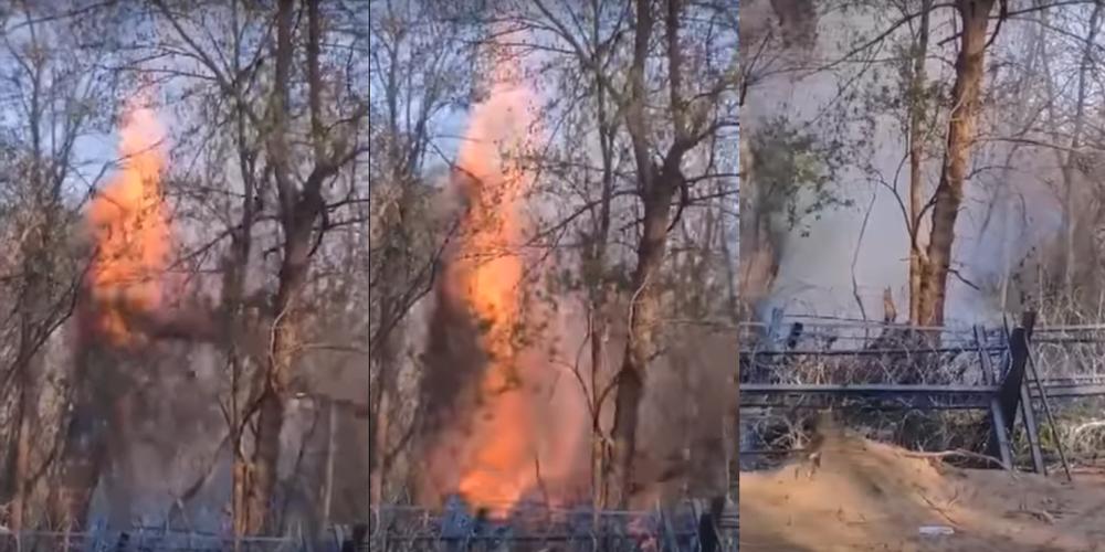 ΒΙΝΤΕΟ: Με φλεγόμενο δέντρο Τούρκοι και λαθρομετανάστες χθες βράδυ προσπάθησαν να ρίξουν τον φράχτη