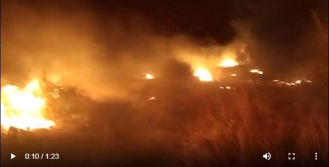 Άραβες καταγγέλλουν Αφγανούς για τη φωτιά στη Μόρια – Βίντεο