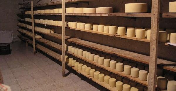 Το τυρί από την Ιερισσό που μπήκε στο ρεκόρ Guiness!