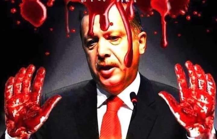 Η Βουλή των Αντιπροσώπων των ΗΠΑ υπέβαλε ψήφισμα για την εξαίρεση της Τουρκίας από το ΝΑΤΟ