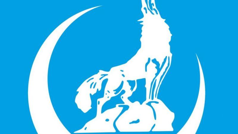 """Η Ολλανδία ζητεί την απαγόρευση των """"Γκρίζων Λύκων"""" σε όλες τις χώρες της Ε.Ε."""