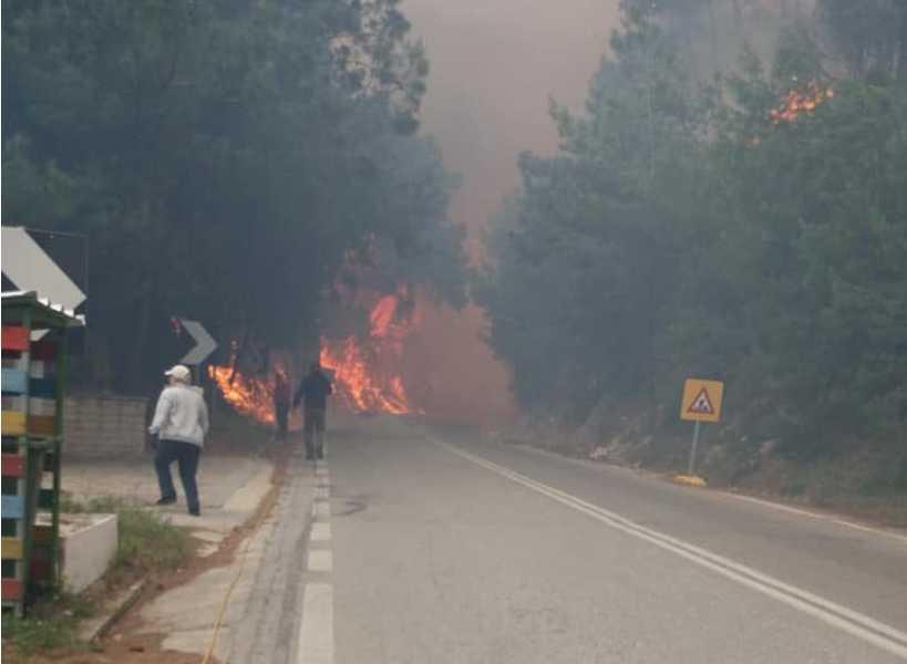 Πυρκαγιά σε δασική έκταση στη Σάμο – Κάηκε σπίτι – Μεγάλη επιχείρηση της Πυροσβεστικής (φωτο, βίντεο)