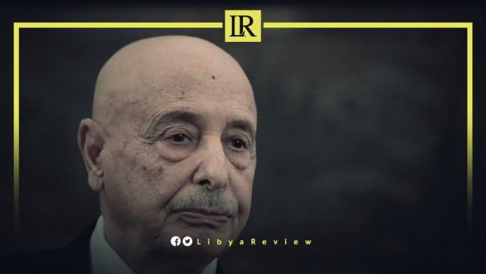 Αγκέλα Σάλεχ: Η έγκαιρη διεξαγωγή των εκλογών στη Λιβύη είναι το βασικό βήμα προς την έξοδο των τουρκικών δυνάμεων