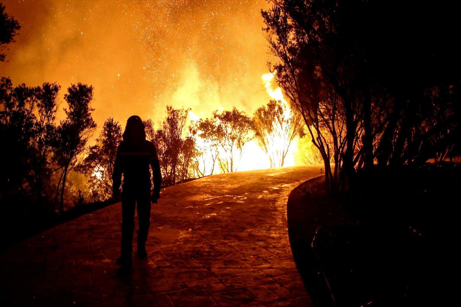 Η μεγαλύτερη οικολογική καταστροφή στην ελληνική ιστορία και οι συνέπειές της