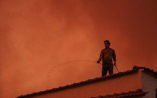 Κοινό μήνυμα της Ομογένειας της Νοτίου Αμερικής για τις πυρκαγιές! Σε αυτούς στερήσαμε τη δυνατότητα να ψηφίζουν